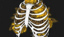 Early_Bird_Cover_Art_dark_skull_final
